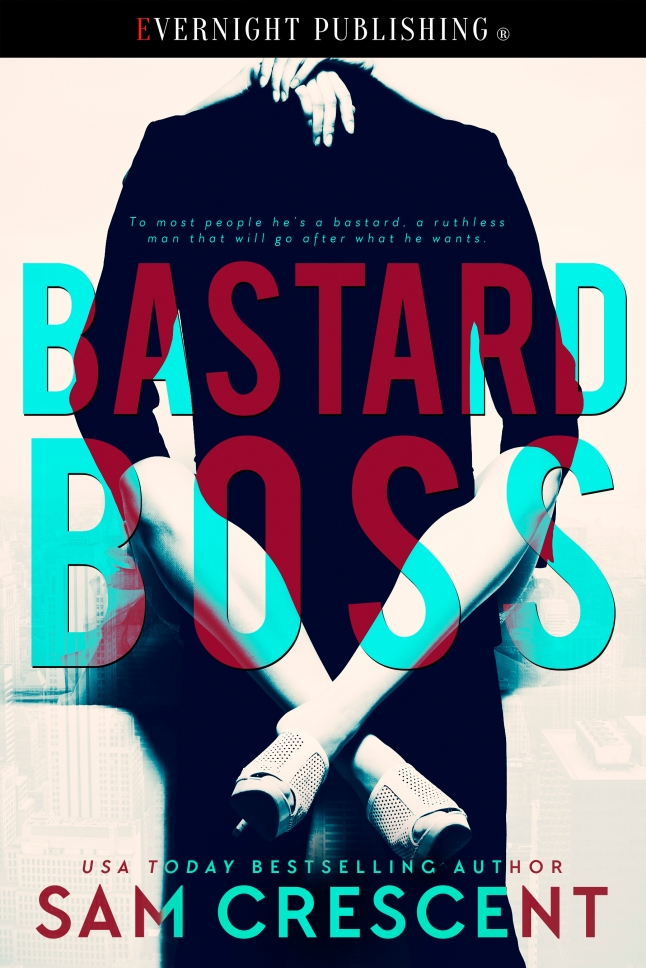 Bastard-Boss-EvernightPublishing-2016