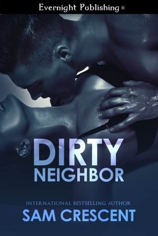 Dirtyneighbour-EvernightPublishing-JayAheer2015-finalimage