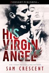his-virgin-angel-evernightpublishing-oct2016
