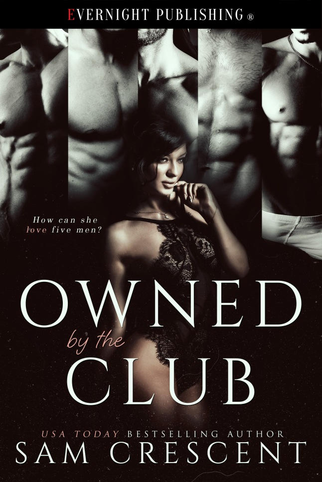 owned-by-th-club-evernightpublishing-nov2016