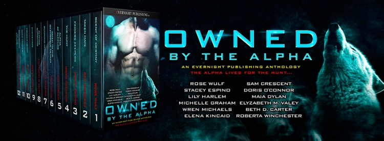 Owned-by-the-Alpha-Antho1-EvernightPublishing2017-MF-banner2