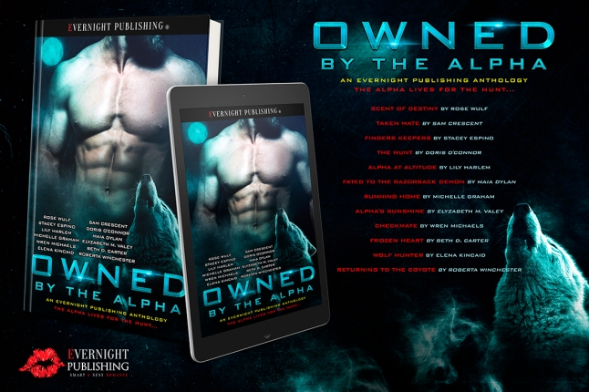 Owned-by-the-Alpha-Antho1-EvernightPublishing2017-MF-eReader-small