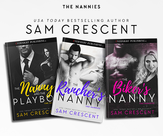 The Biker_s Nanny-evernightbanner-series